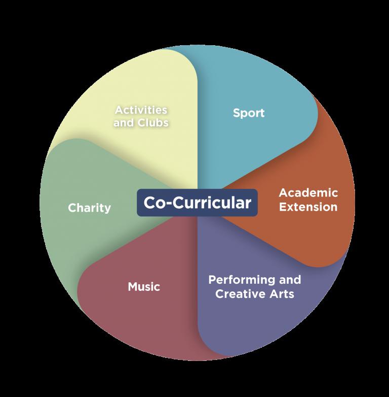 Chart_CCA