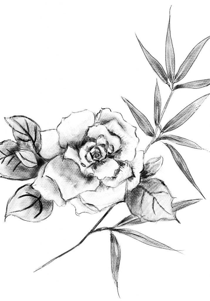 Gloria Siu_10B_Anderson_digital drawing