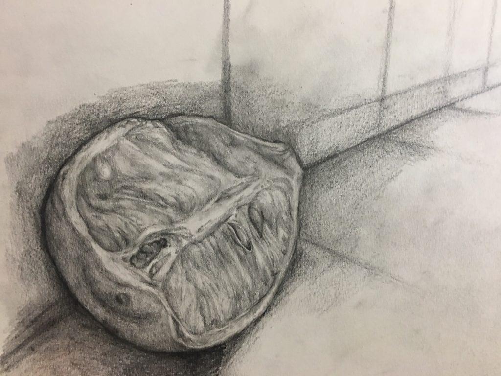 Joy Chen, Year 10 Gellhorn, Pencil drawing